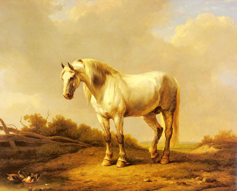 A White Stallion In A Landscape :: Eugene Verboeckhoven - Horses in art ôîòî