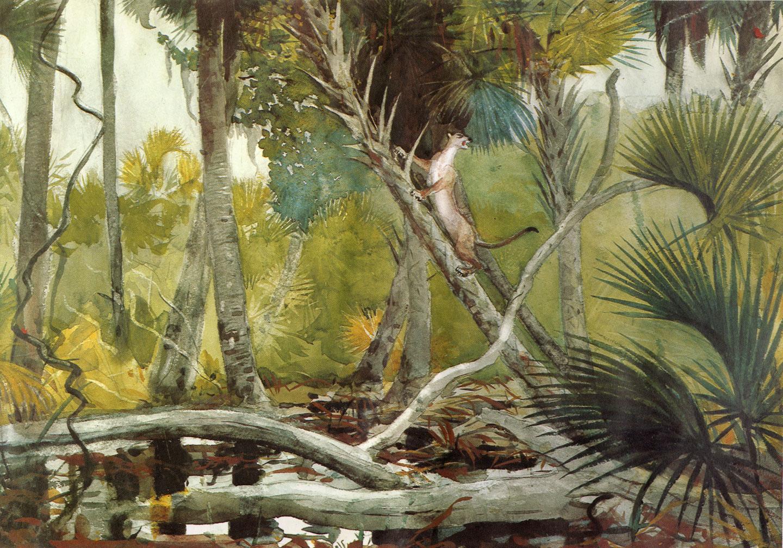 In the Jungle, Florida :: Winslow Homer - Forest landscapes ôîòî