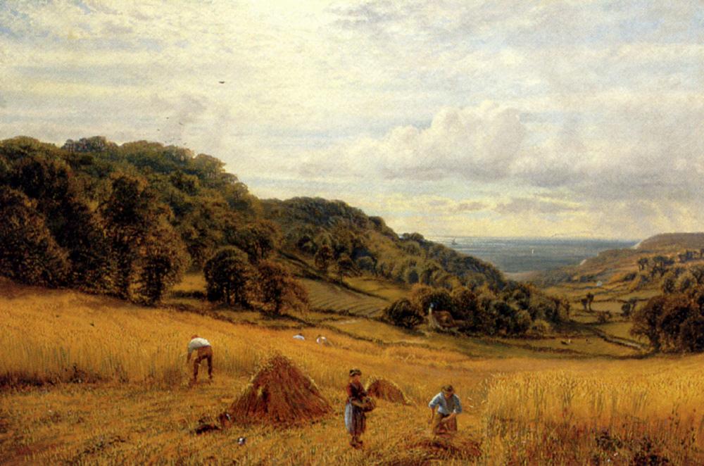 Harvesting At Luccombe, Isle Of Wight :: Alfred Glendening - Village life ôîòî