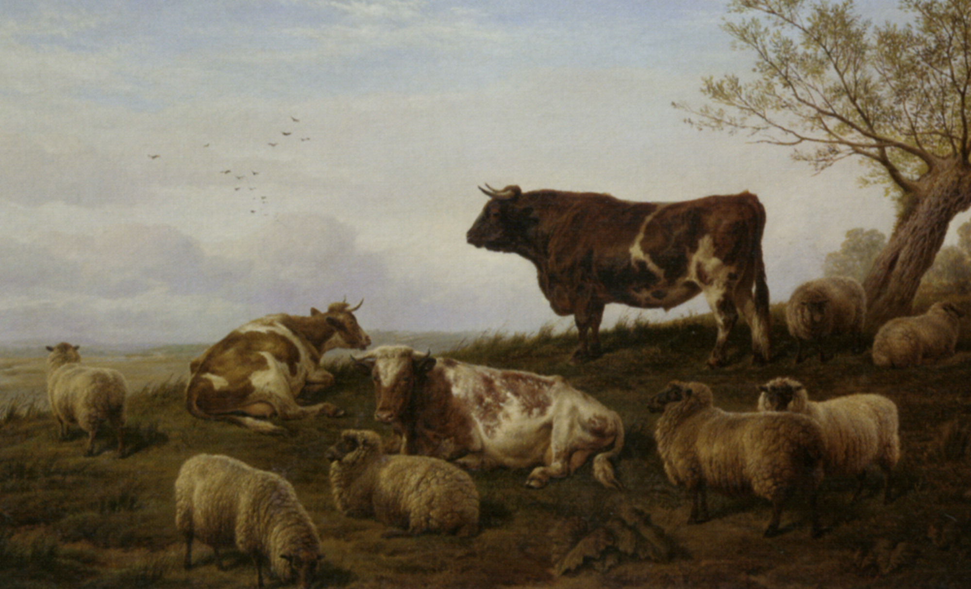 Cattle and Sheep Resting :: Charles Jones  - Landscapes with cows ôîòî