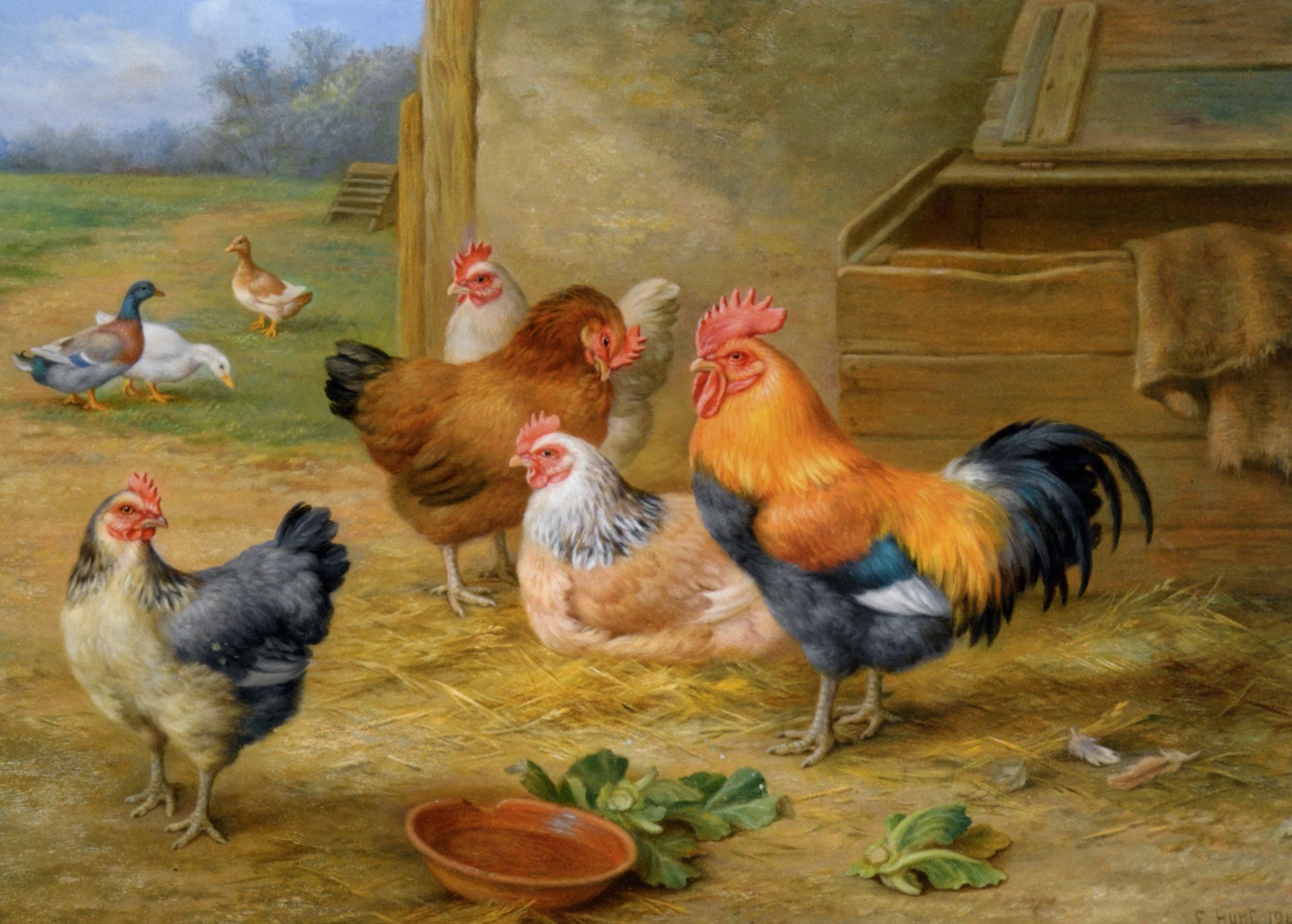 King of the Roost :: Edgar Hunt - Animals ôîòî