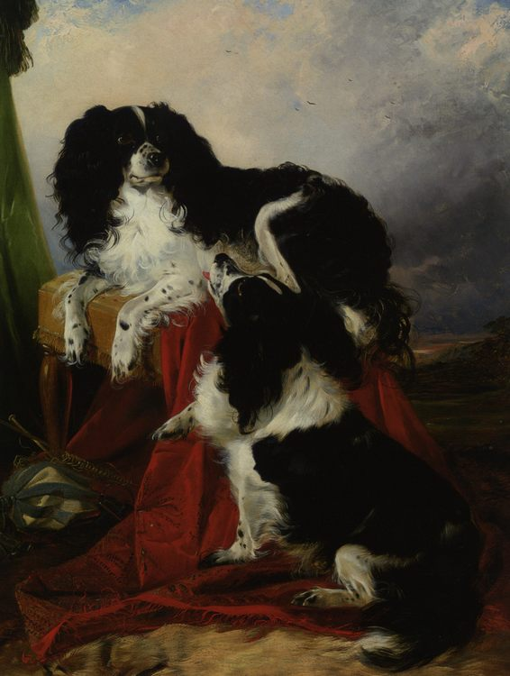 King Charles Spaniels :: Richard Ansdell - Animals фото