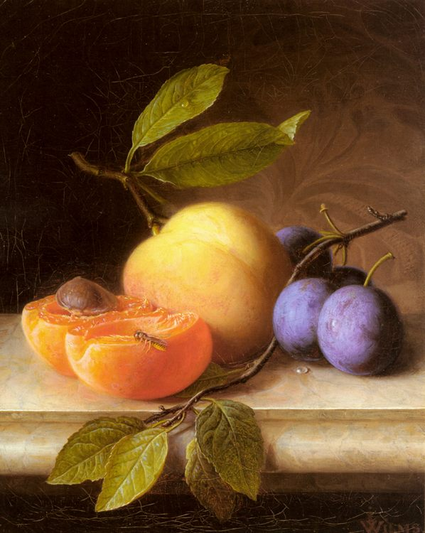 Still life with peaches and plums :: Joseph Peter Wilms - Still-lives with fruit фото