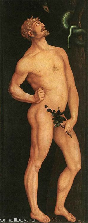 Pictures and Biography of Hans Baldung Green - Adam, 1524 Museum of Fine Arts, Budapest :: Hans Baldung