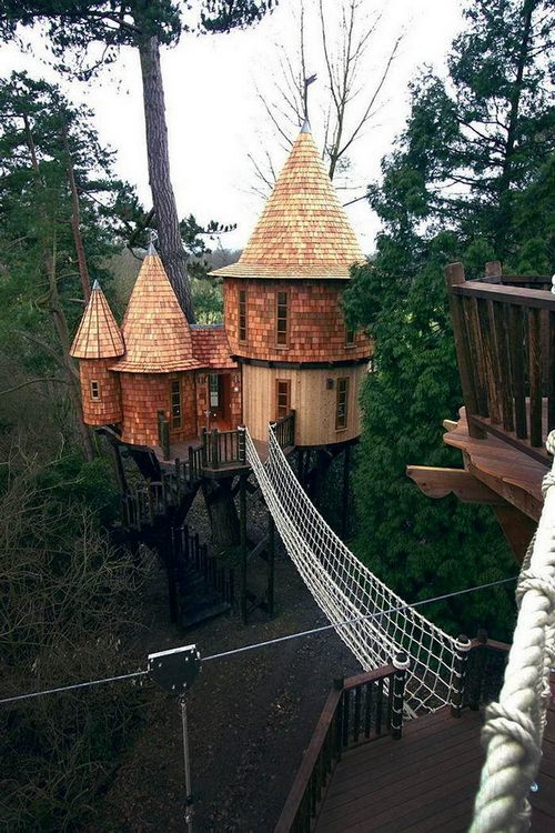 The most amazing houses in the trees