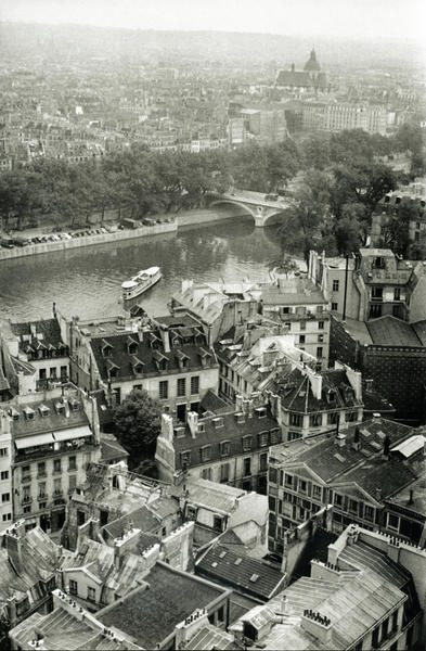 View of Paris from the tower of the Cathedral of Notre Dame