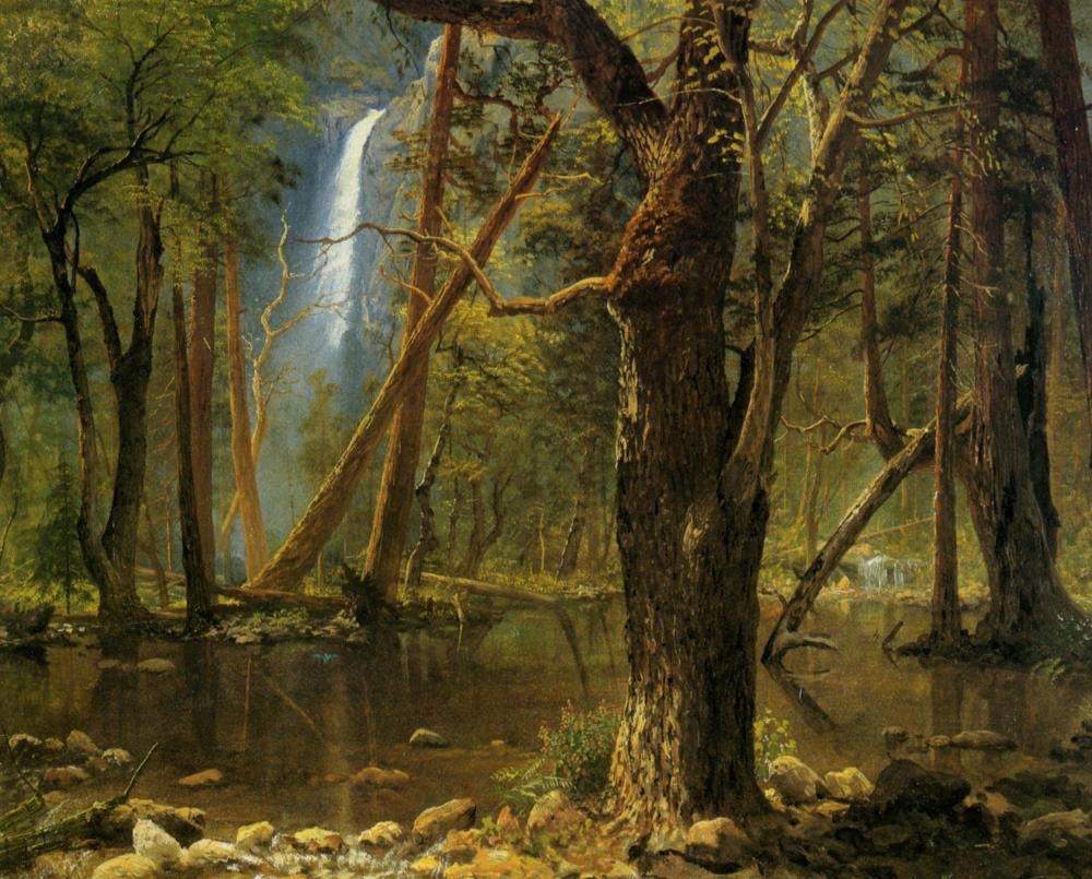 Forest landscapes in art and painting