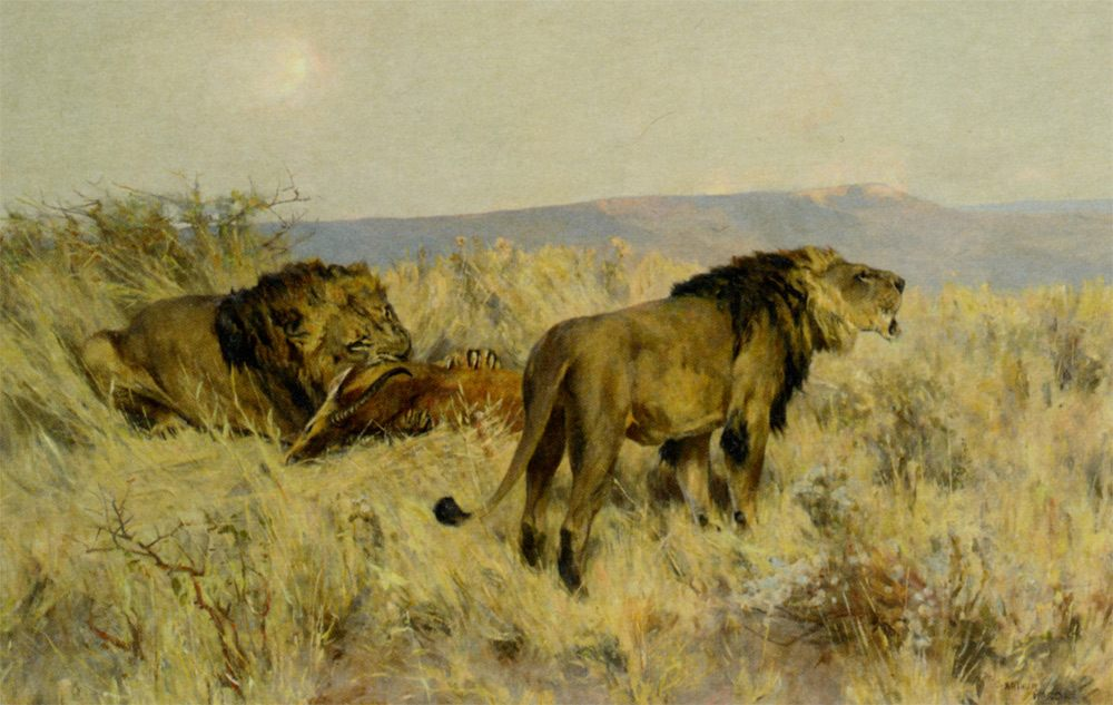 The Prize :: Arthur Wardle - Animals ôîòî