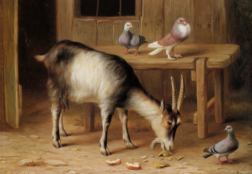 A Goat and Pigeons In a Farmyard :: Edgar Hunt - Animals фото