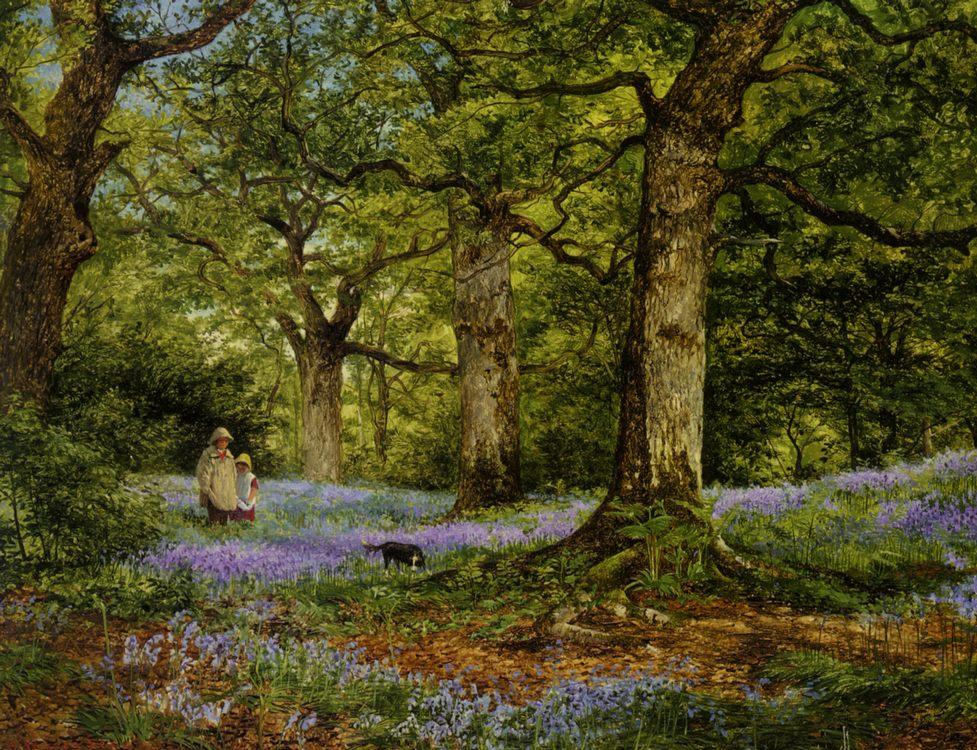 Blue Bells :: Benjamin Williams Leader - Forest landscapes ôîòî