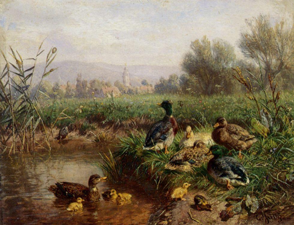 Ducks by a Pond :: Carl Jutz  - Animals фото