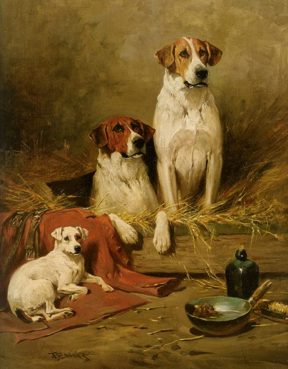 Foxhounds and a Terrier :: John Emms - Animals фото