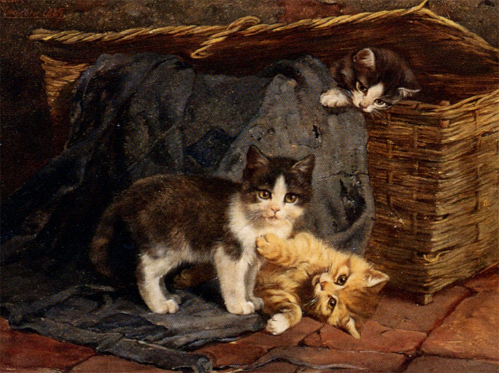 The Playful Kittens :: Julius Adam - Cats фото