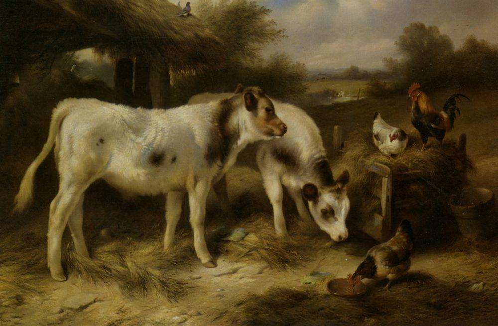 Calves and Hens Feeding :: Walter Hunt  - Animals ôîòî