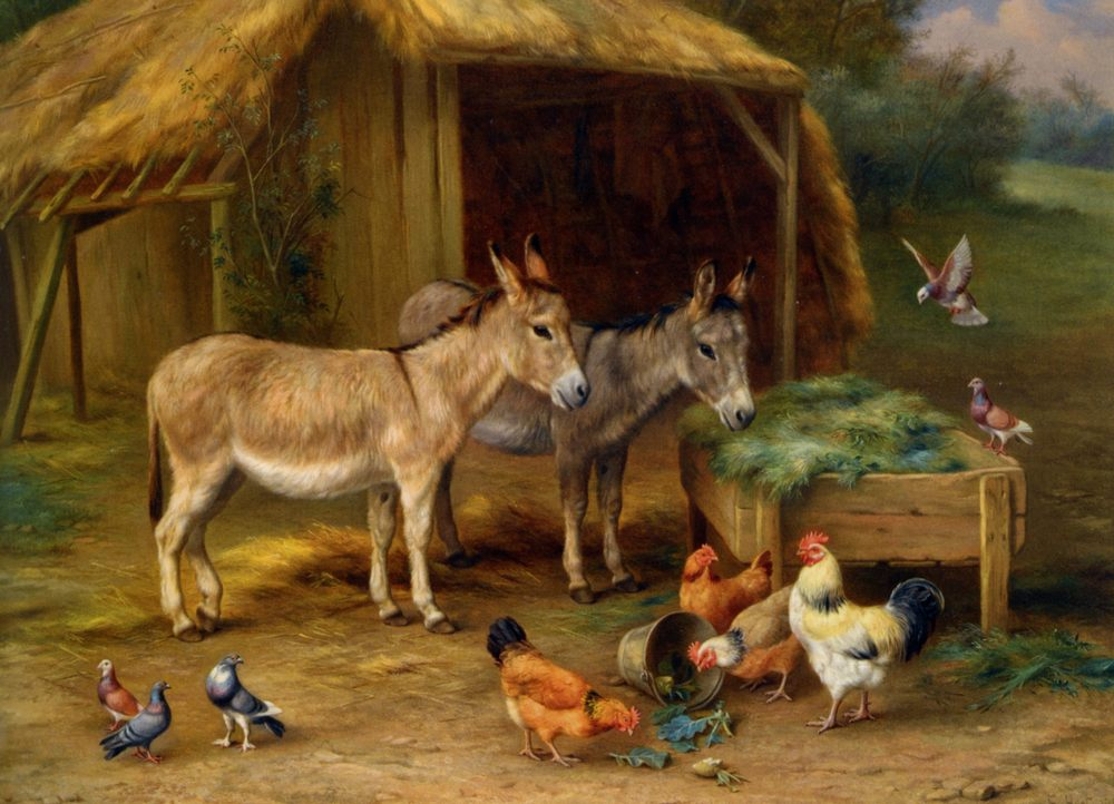 The Best of Friends :: Edgar Hunt - Animals фото