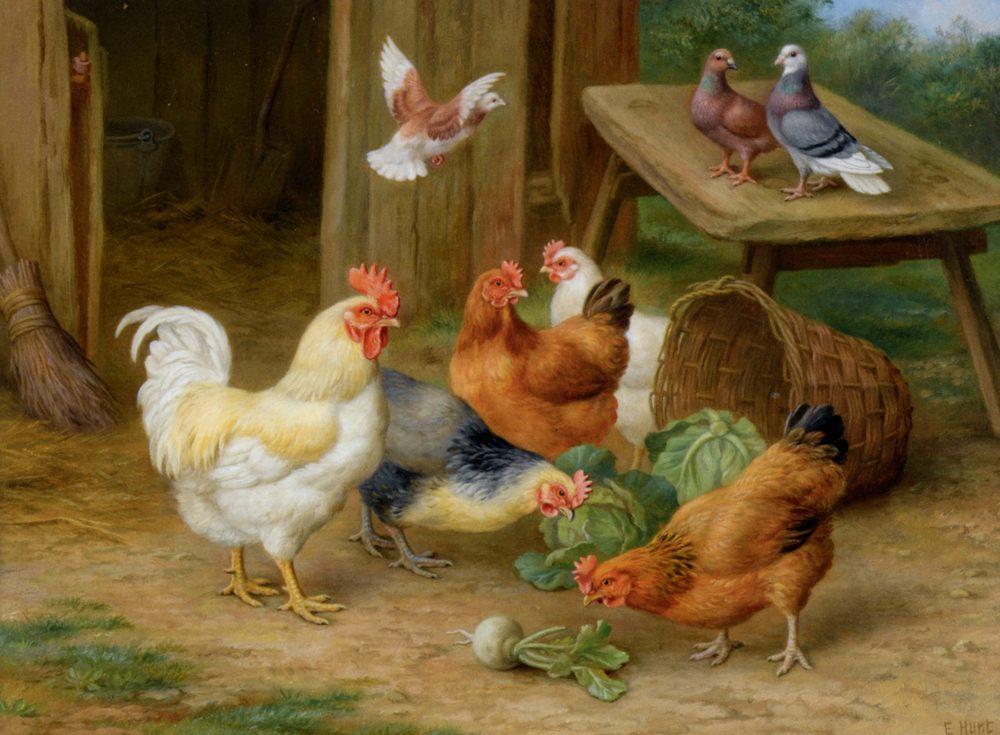 The Pecking Order :: Edgar Hunt  - Animals ôîòî