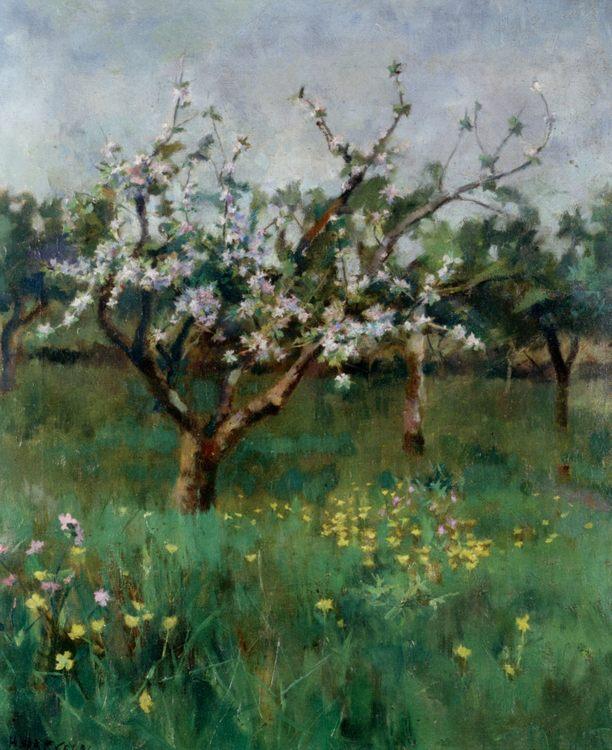 Apple Blossom :: Harold Harvey - Summer landscapes and gardens ôîòî