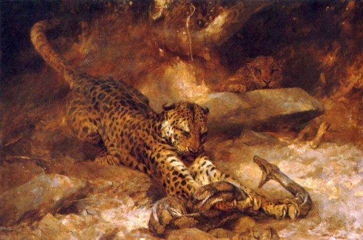 The Attack :: Arthur Wardle - Animals фото